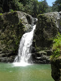 Jarabacoa waterfall dominican republic Stock Images