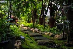 Jardín, árboles del verde del diseño del jardín en la casa Fotografía de archivo