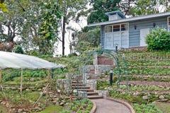 Jardín. foto de archivo libre de regalías