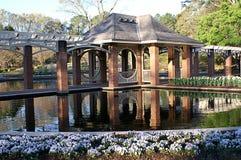 Jardín acuático Imagenes de archivo