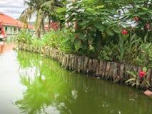 Jardín acuático con plantado Imagen de archivo