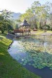 Jardín agradable Imágenes de archivo libres de regalías