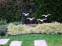 Jardín agradable adornado con las piedras y las plantas a casa Imagenes de archivo
