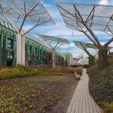 Jardín agradable con la hiedra y las baterías solares Fotos de archivo
