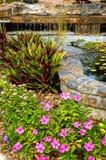 Jardín ajardinado con la cascada Fotos de archivo libres de regalías
