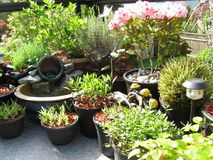 Jardín al aire libre del patio fotos de archivo