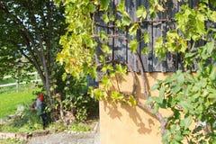 jardín alemán del sur de la cabaña Foto de archivo libre de regalías