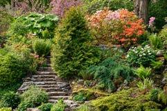 Jardín alpino Imágenes de archivo libres de regalías