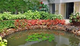 Jardín asiático colorido Foto de archivo libre de regalías