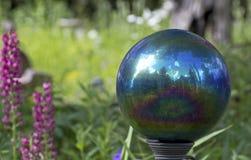 Jardín azul del arco iris que mira el ornamento de la bola Fotos de archivo