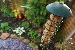 Jardín B del alimentador del pájaro Fotos de archivo libres de regalías