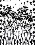 Jardín blanco y negro Imagen de archivo libre de regalías