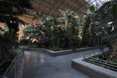 Jardín botánico Atocha Imagen de archivo libre de regalías