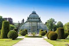 Jardín botánico cerca del palacio de Schonbrunn en Viena foto de archivo