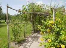 Jardín botánico de Belice imagenes de archivo