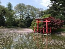 Jardín botánico de Brooklyn, NYC Foto de archivo libre de regalías