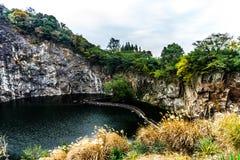 Jardín botánico 9 de China Shangai fotos de archivo