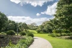 Jardín botánico de Ciudad del Cabo foto de archivo libre de regalías