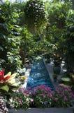 Jardín botánico de Estados Unidos imagenes de archivo