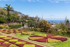 Jardín botánico de Funchal en la isla de Madeira del portugués Imágenes de archivo libres de regalías