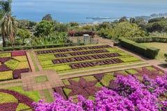 Jardín botánico de Funchal, isla de Madeira, Portugal Fotografía de archivo libre de regalías
