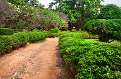 Jardín botánico de Lalbagh en Bangalore imagenes de archivo