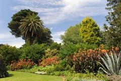 Jardín botánico de Melbourne Imagen de archivo