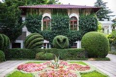 Jardín botánico de Nikitsky en Crimea Fotografía de archivo libre de regalías