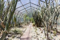 Jardín botánico de Palermo Foto de archivo libre de regalías