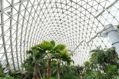 Jardín botánico de Shangai del shan de Chen Fotografía de archivo