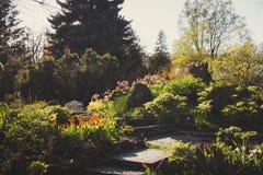 Jardín botánico de St Petersburg Foto de archivo