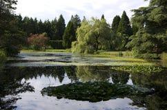 Jardín botánico de VanDusen Imagen de archivo