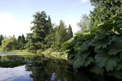 Jardín botánico de VanDusen Imagenes de archivo