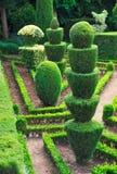Jardín botánico del â verde decorativo del parque, imágenes de archivo libres de regalías