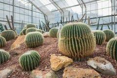 Jardín botánico del sirikit de la reina imagen de archivo