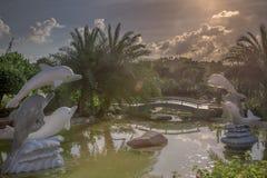 Jardín botánico en la puesta del sol Fotos de archivo libres de regalías
