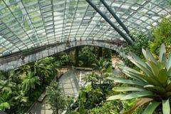 Jardín botánico en Marina Bay Sands 1 Foto de archivo libre de regalías