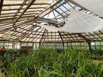 Jardín botánico en Moscú Fotos de archivo libres de regalías