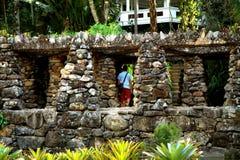 Jardín botánico en Rio de Janeiro Imagen de archivo libre de regalías