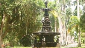 Jardín botánico en Rio de Janeiro almacen de video