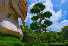 Jardín botánico en Tailandia Imágenes de archivo libres de regalías