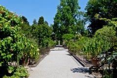 Jardín botánico, Padua, Italia imagenes de archivo