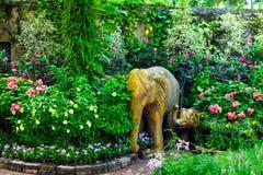 Jardín botánico Pattaya Fotos de archivo libres de regalías