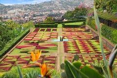 Jardín botánico tropical Foto de archivo