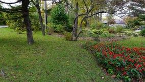 Jardín botánico vladivostok Primorye Rusia Imagen de archivo libre de regalías