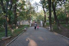 Jardín botánico vladivostok Primorye Rusia Imágenes de archivo libres de regalías