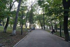 Jardín botánico vladivostok Primorye Rusia Imagen de archivo