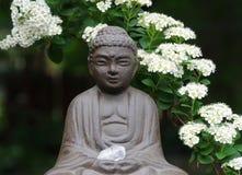 Jardín Buddha del patio trasero imagen de archivo libre de regalías