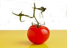 Jardín Cherry Tomato Imágenes de archivo libres de regalías