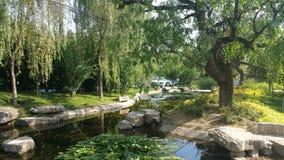 Jardín chino foto de archivo libre de regalías